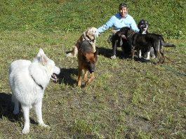 Welpenerziehung mit Hundesitterin Martina Kroh